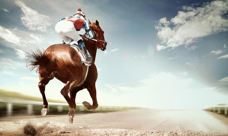 Applying Vicks On Racehorses