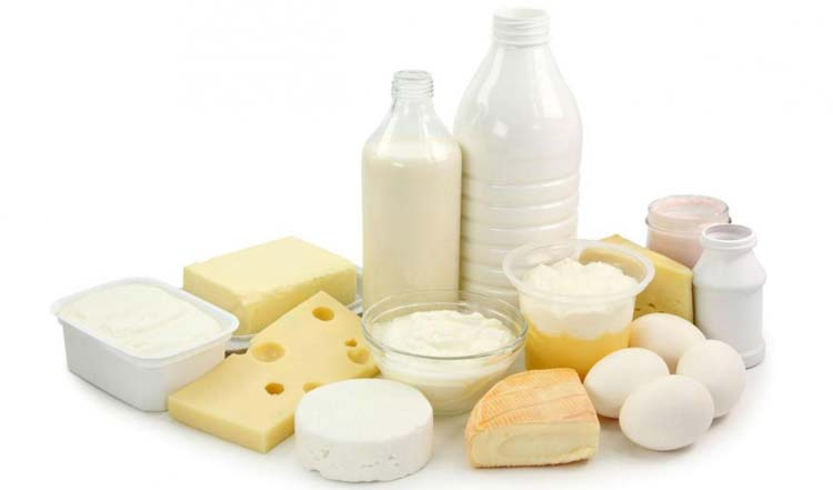 Dairy Products In Dissociated Diet Can Boost Body Metabolism