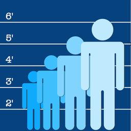 Height Predictor