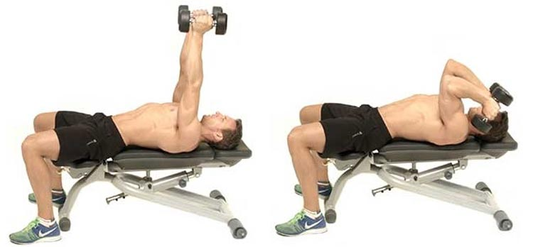 Lying Dumbbell Triceps Extensions
