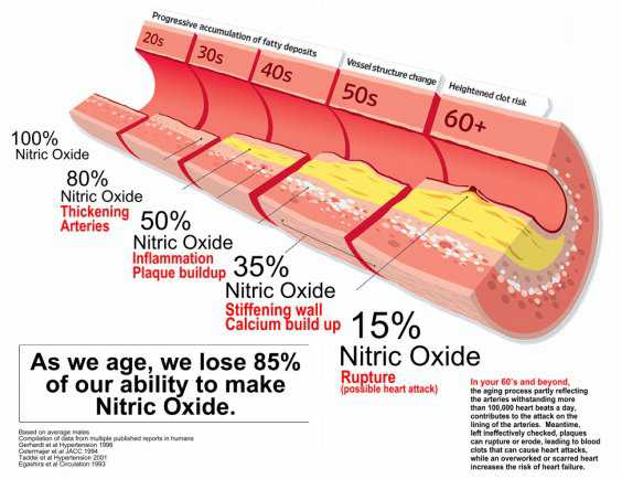 Nitric Oxide Depletion Due To Aging