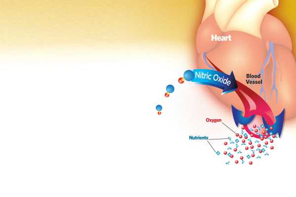 Nitric Oxide Improves Heart Health