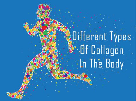 different types of collagen in the body