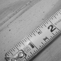 Average Penis Size