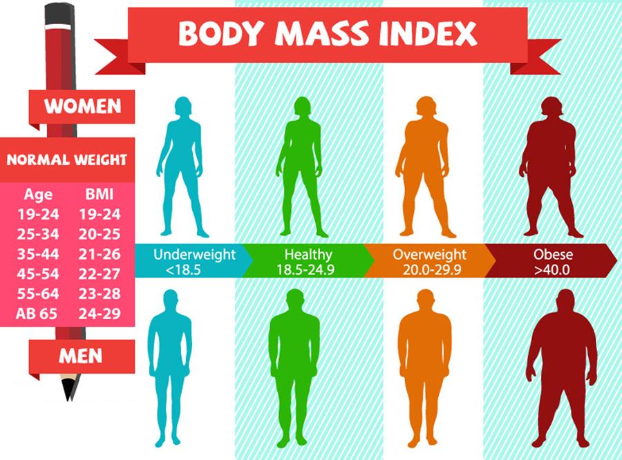 BMI Calculator Chart