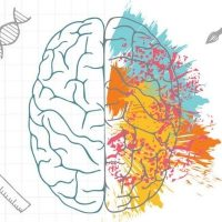 Left Brain vs Right Brain People : Are They Really Different From Each Other?