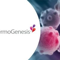 What is Thermogenesis for Weight Loss and How to Achieve it?
